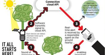 Grafik Rainforest Connection; Rechte: Rainforest Connection