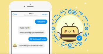 Screenshot Blink the Bee