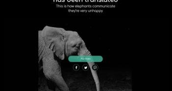 Wie Elefanten sprechen; Rechte: helloinelephant.com