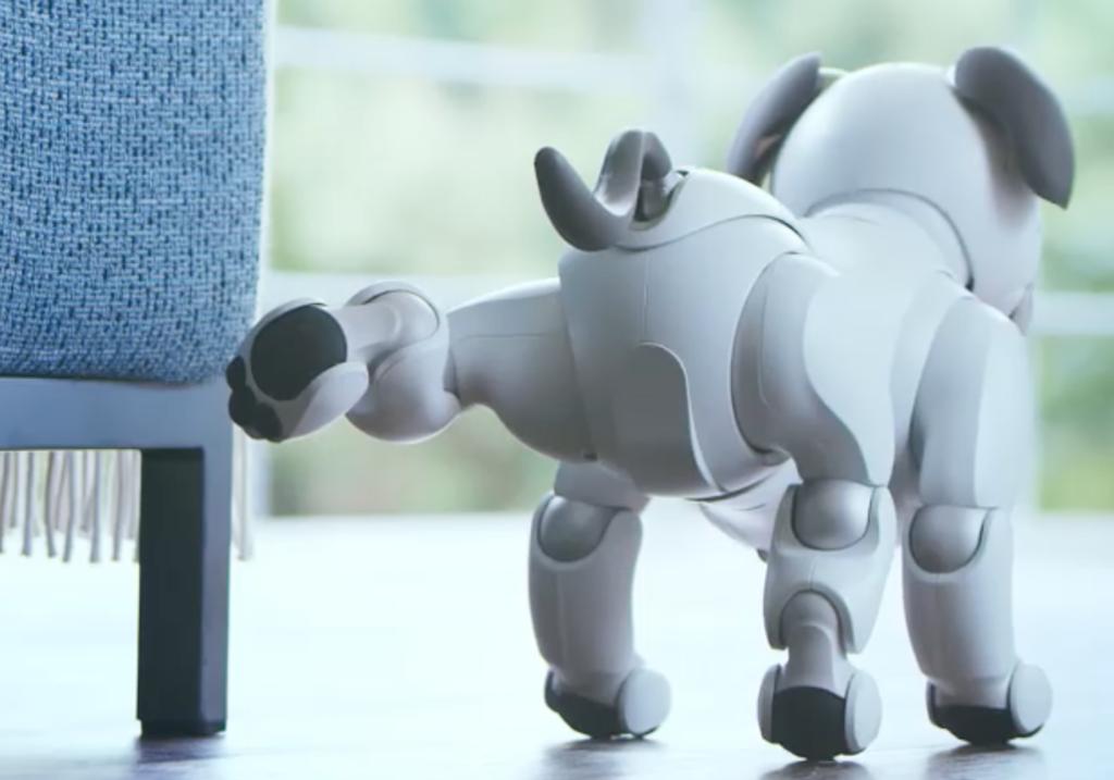 Sonys Robothunder Aibo macht es sich Zuahsue gemütlich; Rechte: Sony