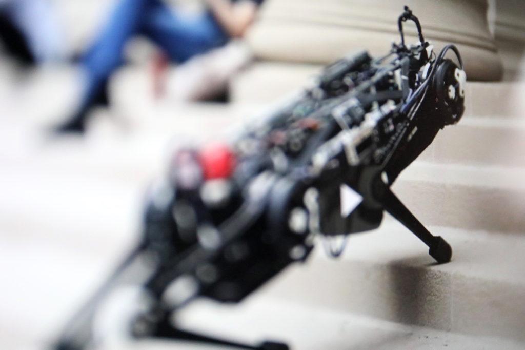 Der am M.I.T. entwickelte Roboter Cheetah kann Treppen steigen; Rechte: MIT/WDR/Schieb