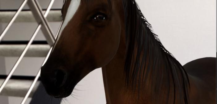 Pferd in der Wohung; Rechte: WDR/Schieb