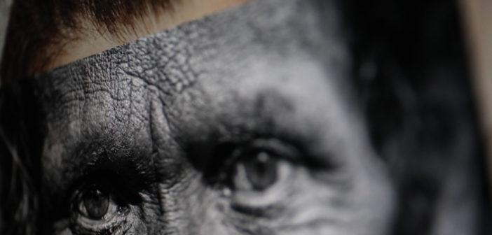 Gesichter überlagen und verbinden: Moderne KI kann das extrem gut; Rechte: WDR/Schieb