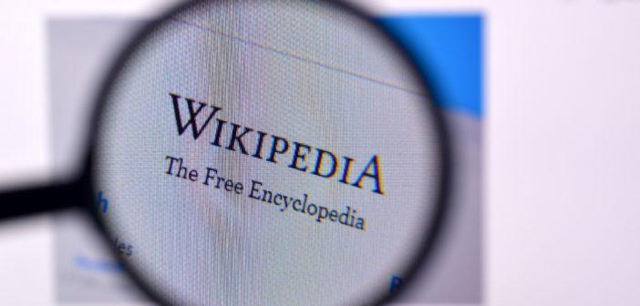 Wikipedia Logo mit Lupe; Rechte: WDR/Schieb