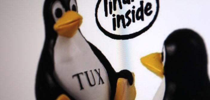 """Das Maskottchen von Linux: """"Tux"""", der Pinguin; Rechte: WDR/Schieb"""