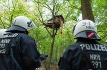 Zwei Polizisten stehen vor einem Baumhaus im Hambacher Forst. Die Polizei und der Energiekonzern RWE haben begonnen den Hambacher Forst zu räumen. (zu dpa Jahreswechsel NOrdrhein-Westfalen) (Foto: Christophe Gateau/dpa)
