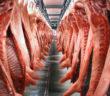Bild von Schweinhälften auf einer Stange (Bild: dpa)