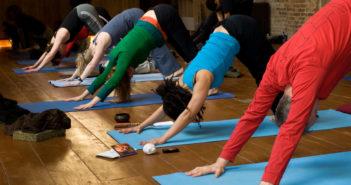 Astanga yoga - downward dog